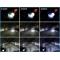 я Ксеноновая лампа (копия) PHILIPS D3S 4300K